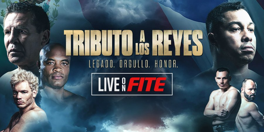 Julio Cesar Chavez Jr. vs Anderson Silva